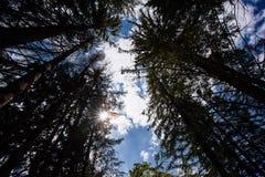 Vista di giorno soleggiato dalla terra Immagini Stock Libere da Diritti
