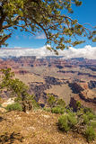 Vista di Grand Canyon dal punto del Mohave Fotografia Stock