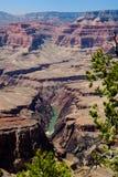 Vista di Grand Canyon il fiume Colorado, punto di Pima Fotografia Stock Libera da Diritti