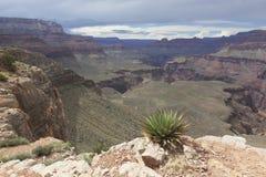 Vista di grande canyon interno Fotografia Stock Libera da Diritti