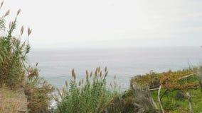 Vista di grandezza dell'Oceano Atlantico dalla riva cliffy dell'isola del Madera stock footage