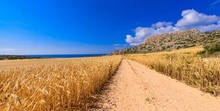 Vista 3 di greco del capo Fotografie Stock