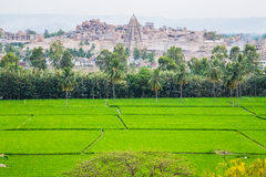 Vista di Hampi con le risaie, India Immagini Stock