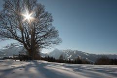 Vista di inverno in Austria Immagini Stock Libere da Diritti