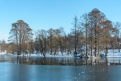 Vista di inverno, da Nicolae Romanescu Park Fotografia Stock Libera da Diritti