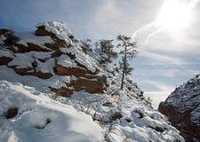 Vista di inverno dall'allerta degli esploratori sugli angeli che atterrano la traccia di escursione in Zion National Park nell'Ut Fotografia Stock