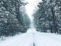 Vista di inverno del parco di stato dello stagno della sbavatura Immagini Stock Libere da Diritti