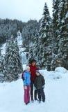 Vista di inverno della cascata delle alpi Immagine Stock Libera da Diritti