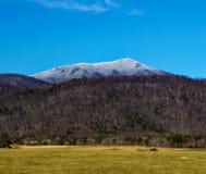 Vista di inverno della montagna superiore piana fotografia stock