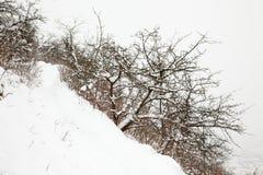 Vista di inverno di Jena Fotografia Stock Libera da Diritti