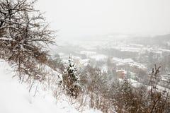 Vista di inverno di Jena Fotografie Stock Libere da Diritti