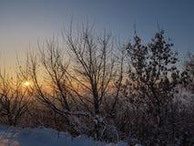 Vista di inverno durante il tramonto Immagine Stock