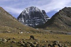 Vista di Kailash fotografia stock libera da diritti