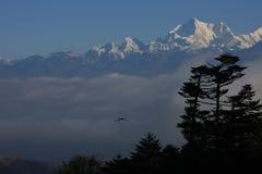 Vista di Kanchenjunga Fotografia Stock