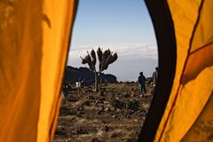 Vista di Kilimanjaro 012 dalla tenda Immagine Stock