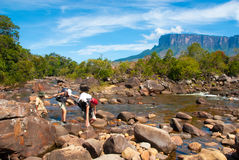 Vista di Kukenan Tepui, Gran Sabana, Venezuela Fotografia Stock Libera da Diritti