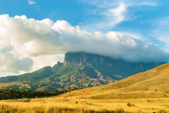 Vista di Kukenan Tepui in grande savanna nel Venezuela Fotografia Stock Libera da Diritti