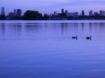 Vista di Lakeside dell'orizzonte al crepuscolo II di Rotterdam fotografia stock