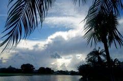 Vista di Lakeside delle palme e del tramonto ardente arancio Fotografie Stock Libere da Diritti