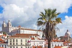 Vista di Lisbona, Portogallo, con la palma nella priorità alta Fotografie Stock