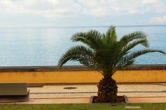 Vista di Madeira fotografie stock libere da diritti