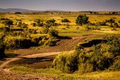 Vista di Mara masai Immagini Stock Libere da Diritti