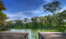 Vista di mattina dal lago Fotografia Stock