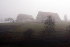 Vista di mattina in foresta nera Fotografie Stock Libere da Diritti