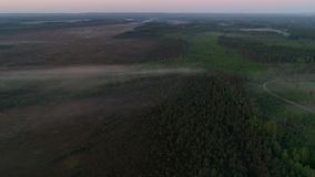 Vista di mattina la foresta ed i campi archivi video