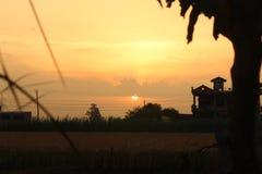 Vista di mattina in una zona rurale in grande azienda agricola nel Punjab India fotografia stock