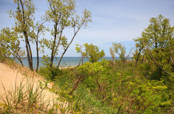 Vista di Michigan di lago dalla parte superiore della duna immagini stock