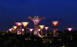 Vista di notte dei giardini dalla baia a Singapore Immagini Stock Libere da Diritti