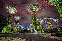 Vista di notte dei giardini dalla baia, Singapore Fotografia Stock