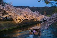 Vista di notte del canale di Okazaki con il fiore di ciliegia fotografia stock