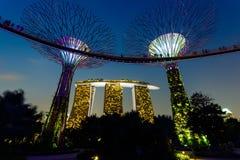 Vista di notte del giardino Singapore Fotografia Stock Libera da Diritti