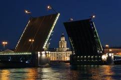 Vista di notte del ponticello del palazzo. St Petersburg Immagini Stock Libere da Diritti