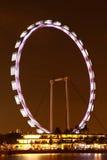 Vista di notte dell'aletta di filatoio di Singapore Immagine Stock Libera da Diritti