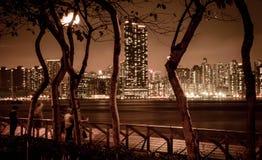 Vista di notte dell'orizzonte di Hong Kong fotografie stock libere da diritti