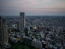 Vista di notte di Tokyo dal  metropolitano del åº del ½ del ±äº¬éƒ del  del æ della costruzione di governo, Shinjuku, Giappone Immagine Stock Libera da Diritti