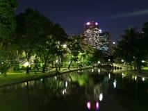 Vista di notte nel parco Fotografia Stock