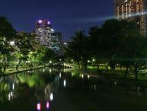 Vista di notte nel parco Immagine Stock