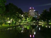 Vista di notte nel parco Fotografie Stock Libere da Diritti