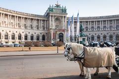 Vista di nuovo castello in Hofburg a Vienna in primavera Immagini Stock