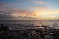 Vista di occhio di uccelli delle Americhe 2015 di las di Tenerife Europa Immagine Stock