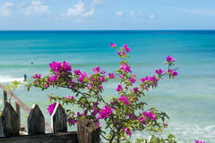 Vista di oceano caraibica Fotografia Stock
