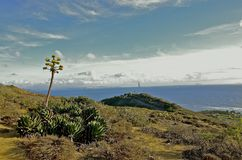 Vista di oceano del Point Loma Fotografia Stock