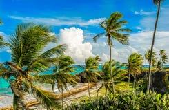 Vista di oceano delle Barbados della costa Est Fotografie Stock