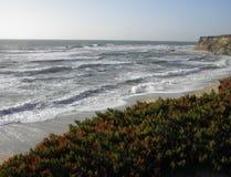 Vista di oceano di Half Moon Bay California Fotografia Stock