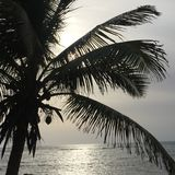 Vista di oceano di mattina Immagine Stock
