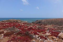 Vista di oceano, Marocco Fotografia Stock